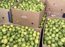 لليمون للبيع يوجد توصيل مسقط 20 كيلو 6ريال