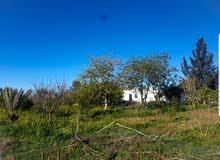 ارض فلاحية محفظة و مسجلة للزراعة و السكن