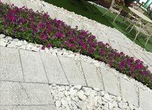 حجر للزينه الحدائق