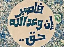 مصري محتاج عمل كاشير استقبال مدخل بيانات بائع