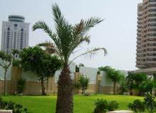apartment for rent in Tripoli city Bin Ashour