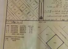 للبيع ارض في ولاية محضة مساحتها 905 م