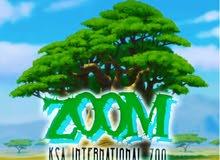 شعار حديقة حيوان عالمية في السعودية من تصميمي باسم زووم