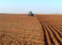 مزرعة 25 فدان للبيع قابلة لتجزئه من 5 فدان