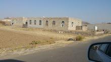 ارض 9 لبن في صنعاء