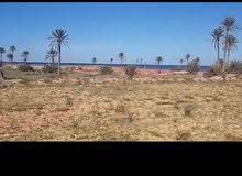 ارض في جزيرة الاحلام قرقنة