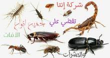 شركة إنتا لمكافحة الافات والحشرات والصراصير والفئران
