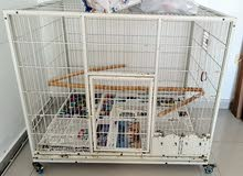 Large Bird Cage for Macaw and African Grey for sale
