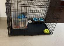 قفص واغراض حيوان  Cage and animal items