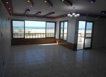 شقة 125م اول صف علي البحر - مسجلة في شاطئ النخيل الاسكندرية