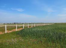 أرض فلاحية للبيع مساحتها 3 هكتار بمدينة بوزنيقة