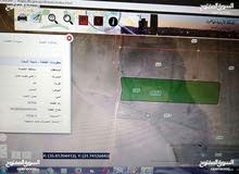 جنوب عمان-نتل-البستان قطعة أرض زراعيه 11 دونم للبيع