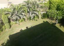 فيلا مفروشة 4غرف بالرحاب موقع وفيو مميز بحديقة خاصة كبيرة