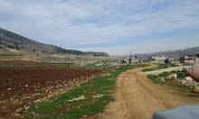 ارض للبيع في البقاع الغربي منطقة مزارع لوسي