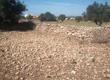 ارض للبيع -  قرب مطار مدينة الصويرة