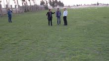 اراضى زراعية للبيع عقارات الاسماعيلية بالقصاصين البعالوة ربيع للعقارات