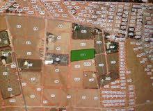 ارض بالقسطل الغزلانيات على حدود التنظيم وقريبه من شارع المطار