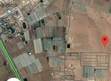 أرض للبيع في الطنيب السكة الغربي خلف جامعة الاسراء