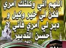 مستشار قانوني مصري ( نظم عامة)/ محامي بالنقض