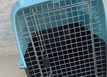 للبيع صندوق كلاب الحجم الكبير استخدام مرتين فقط 28 و قابل