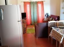 للايجار السنوى شاليه ببورتو جولف مارينا 2 غرفة 2حمام