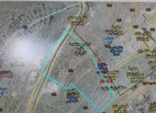 من المالك مباشرة - ارض للبيع في ابوقش بمساحة 22 دونم