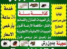 شركة مكافحة حشرات وقوارض بأرخص الأسعار كفاله سنه جميع مناطق الكويت