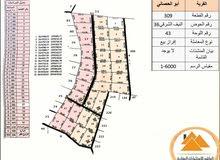 مشروع قرية ابو الحصاني المميز بسعر مغري و منافس جداً