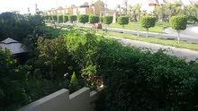 ارضي بجنينه للبيع في كمبوند بيفرلي هيلز الشيخ زايد