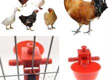 سقاية اوتوماتك لطيور