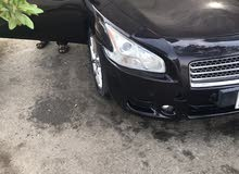 Nissan Maxima 2010 For Sale