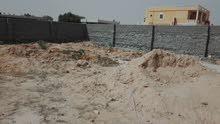 بلدة سيدي عبدالرحمن / الضبعه مطروح