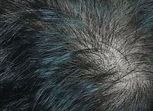 mokeru shampoo for black hair