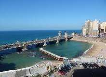 تمتع بالسكن بالاسكندريه بستانلي علي البحر مباشره بأقل سعر للمكان
