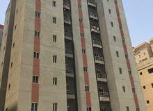 للايجار عمارة مجددة مكونه من 40 شقة