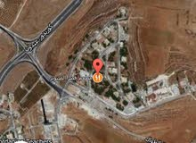 ارض مساحة 1400 متر خلف مطعم قصر الصنوبر اطلالة بانورما