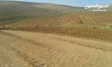 ارض 5دونم في شرق جرش  بار السعودي