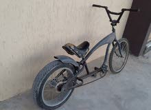 دراجه هيرلي للبيع