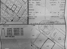 ارض فالعامرات خلف الكاتب العدل الرابعه رقم القطعه 1380 اول خط موقع ممتاز