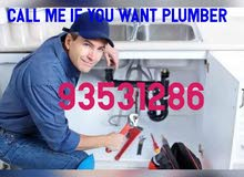 plumber electrician home mantinec work