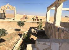 مزرعة من المالك مباشرة - الصلاحية _جنوب عمان .