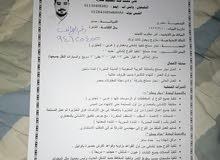 باحث عن عمل نجار مسلح خبره اكثر من 15 سنه