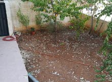 Khalda apartment is up for rent - Amman