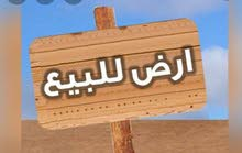 يوجد اراضي بي ضم الفرز طرابلس
