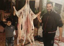 لحام  متنقل لذبح الأغنام في عمان