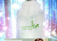 اللي شعرها مجعد شخن تالف هايش