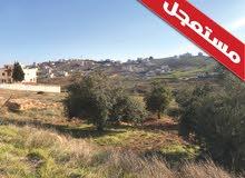 للبيع ارض  في شفا بدران حوض المكيمين قطعة 600م  خلف منتز الأمير حمزة