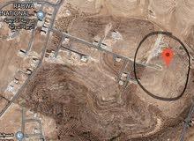 أرض للبيع في شفا بدران زينات الربوع المكمان سكن (ب) حي أبو خليفة مساحة 751 م