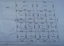 قطعة أرض المرازيق/ قصر بن غشير