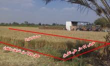 قطعة أرض 7قيراط على طريق القرشية متفرع من طريق طنطا المحلة ك9-اول نمرة